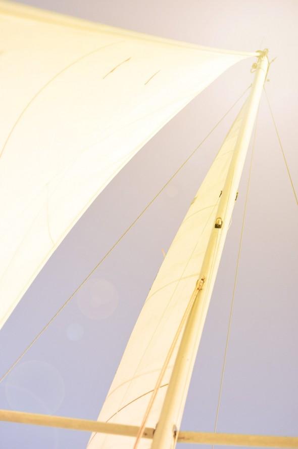 DSC 3286 590x888 Sailing the Baysailing 2